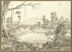 View of the hill of Parasnath from the encampment near Chhatna (Bengal); a tank and gnarled tree in foreground. 1 February 1823